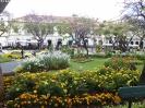 030_2015-04-07_Funchal_hoe_P1030683